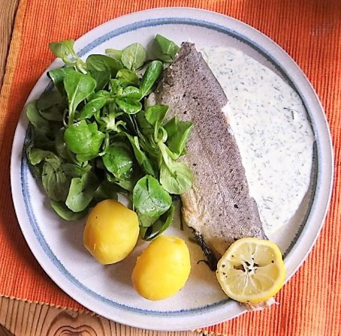 Forelle mit kalter Dillsauce und Feldsalat (2)