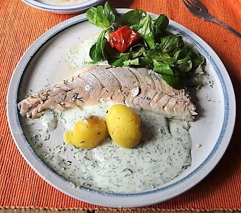 Forelle mit kalter Dillsauce und Feldsalat (3)