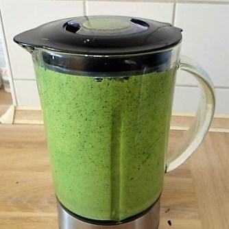 Wilde grüne Sauce (8)