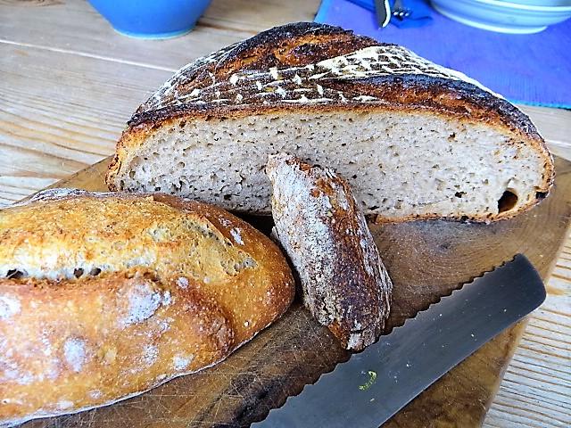 Brot (2)