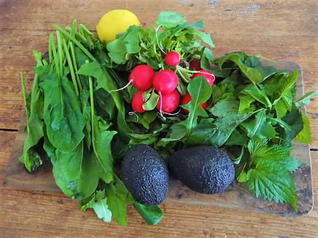 Kartoffeltaler mit Guacamole und Wildkräutersalat (7)