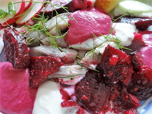Matjes,Rote Bete Coulis, Salate (3)