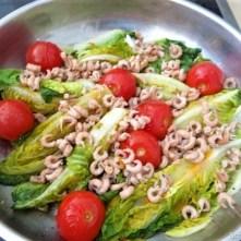 Gebratener Salat-Nordseekrabben und mehr (10)