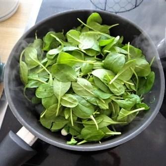 Gemüse,Salat und Ei (15)