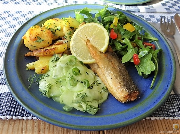 Grüner Hering,Salate,Bratkartoffel (15)