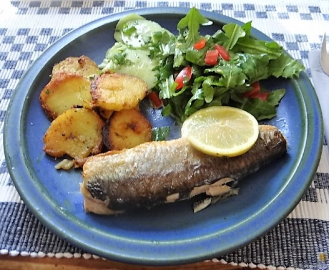 Grüner Hering,Salate,Bratkartoffel (16)