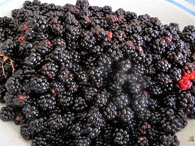 Brombeer Marmelade und Kompott (2)