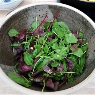 Forelle mit Petersilienkartoffel, Meerrettichdip und Salat (21)