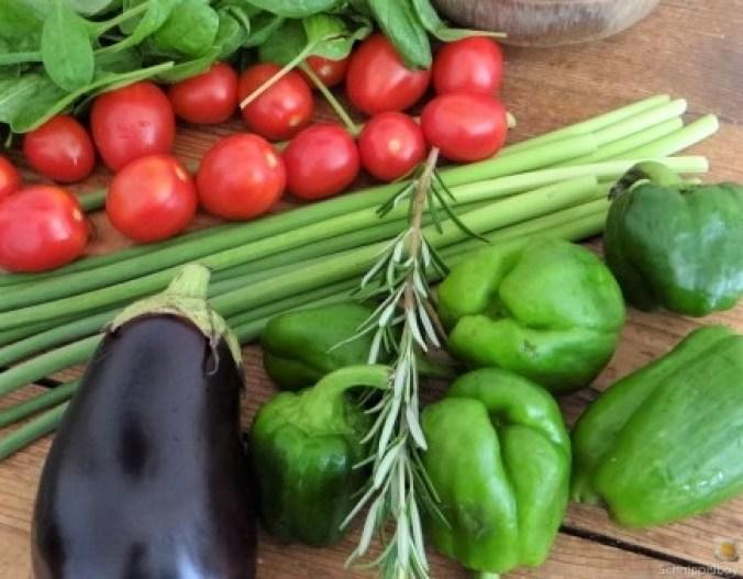 Knoblauchgrün,Gemüse,Kritharaki (7)