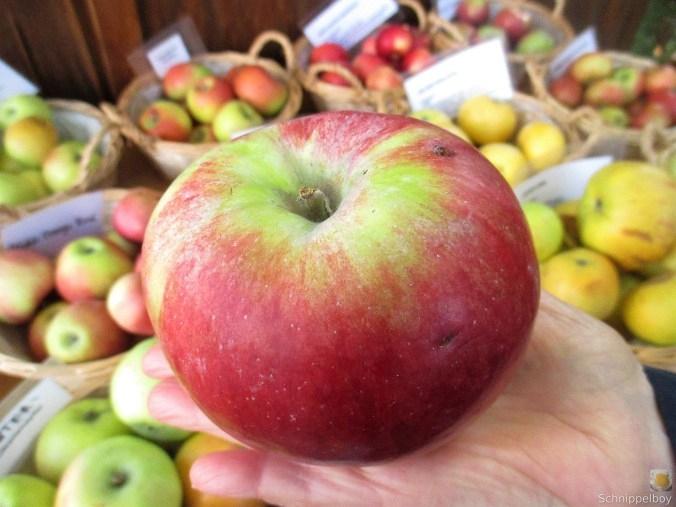 Pfannkuchen mit Apfelmus (2)