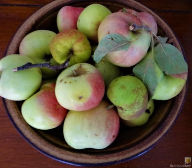 Pfannkuchen mit Apfelmus (4)