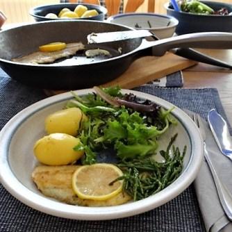 Scholle, Pflücksalat, Queller und Apfelkompott (13)