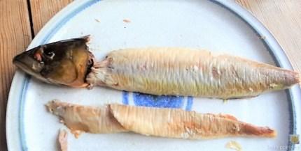 Kartoffelsalat und Makrele (15)