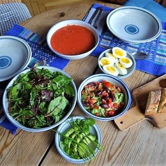 Tomatensalsa,Guacamole,Salat und Ei (15)