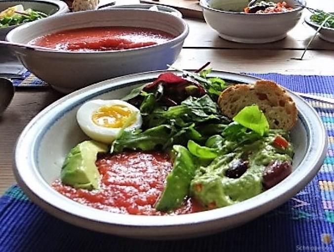 Tomatensalsa,Guacamole,Salat und Ei (17)