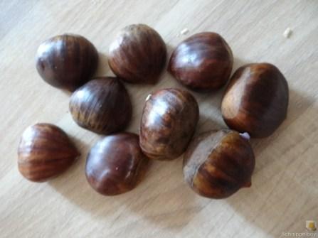 Maronensuppe (11)