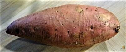 Fenchel,Süßkartoffeln und Champignon (10)