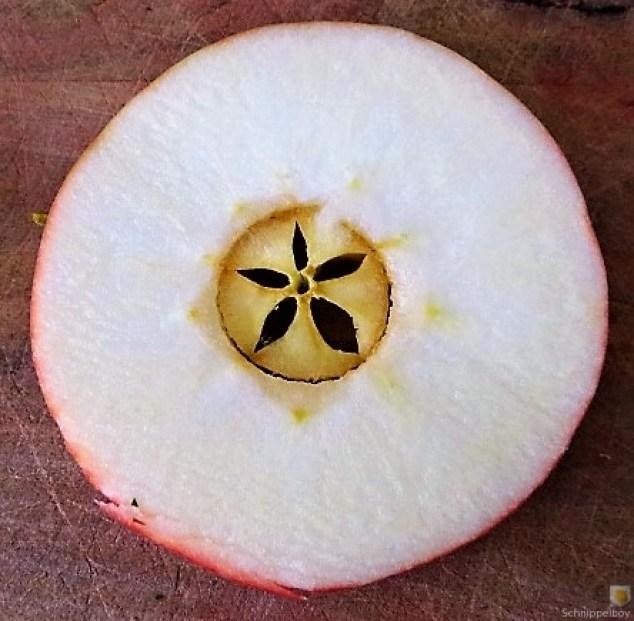 Sellerie,Kartoffelstampf und Apelmus (23)