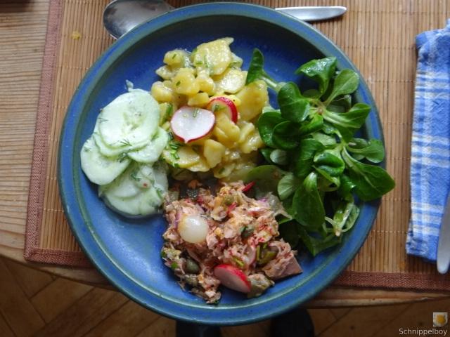 Kartoffel-Thunfisch-Feld- Gurkensalat (15)
