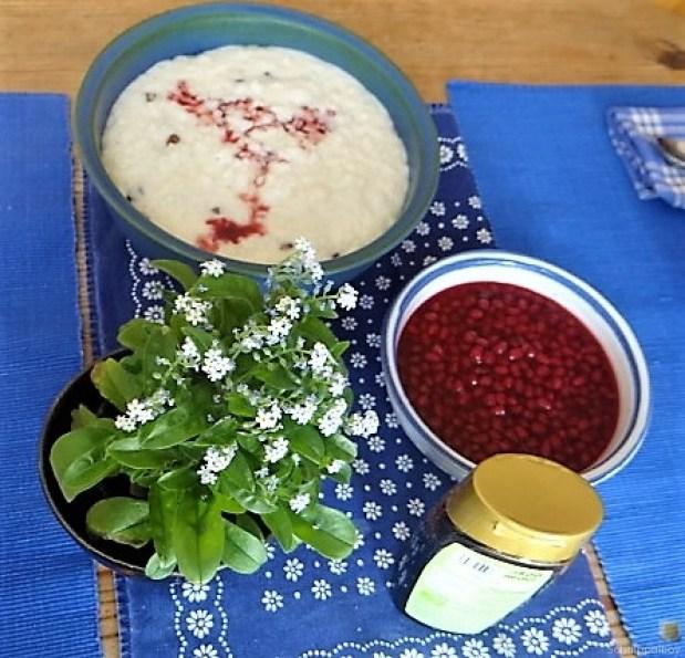 Reisbrei mit Granatapfel Kompott (12)