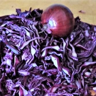 Tassenei und Rotkohlsalat (12)
