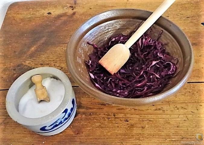 Tassenei und Rotkohlsalat (15)