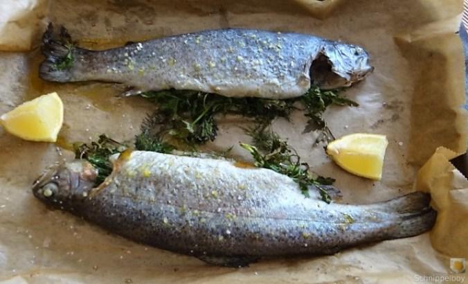 Forelle, Salate und Dip (1)