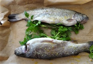 Forelle, Salate und Dip (15)