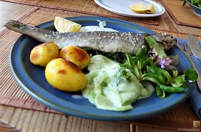 Forelle, Salate und Dip (22)