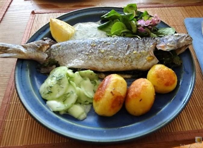 Forelle, Salate und Dip (3)