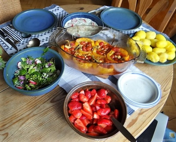 Gefüllte Paprika,Tzatziki,Bunter Salat (6)