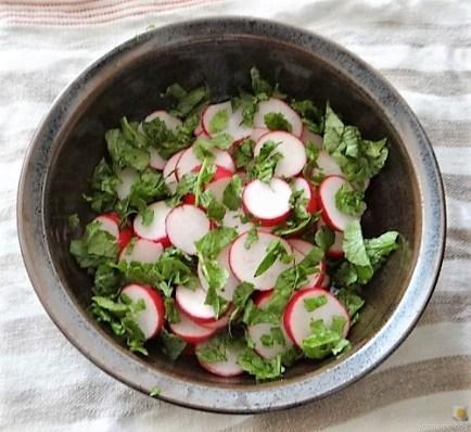 Lachs und Salate (10)