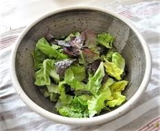 Lachs und Salate (11)