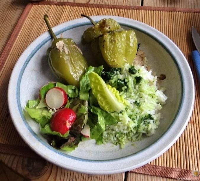 Paprika,grün,gefüllt (4)