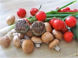 Pilze und Tomaten (8)
