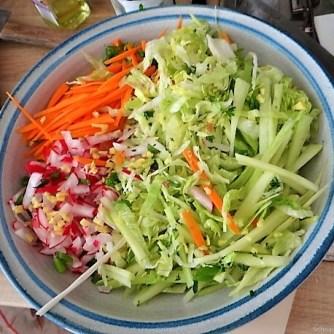 Glasnudeln, Gemüse und Putenfleisch (12)