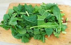 Gedämpftes Gemüse, Ernußsauce und Polenta, (18)