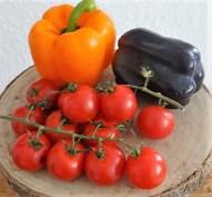 Gefüllte Paprika mit Tomatensauce und Reis (9)