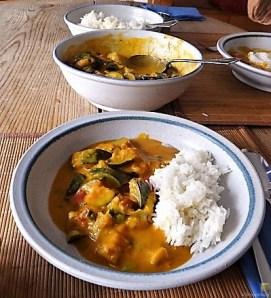 Zucchini Curry (19)