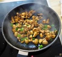 Champignon,Lauch, Kürbis und Eierpfannkuchen (13)