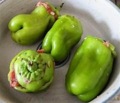 Gefüllte Paprika auf Zucchini Zoodles und Tomaten (9)