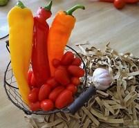 Spitzpaprika,Tomaten,Pappardelle (11)