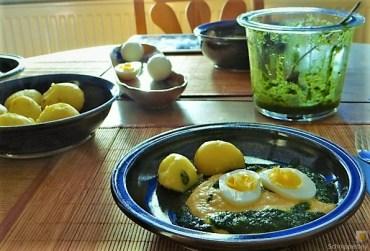 Schwarzwurzelpüree, Petersilienöl, Eier (24)