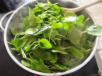 Spinatpfannkuchen mit Salaten (10)