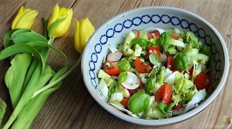 Gnocchis mit Tomatensauce und Muscheln (24)