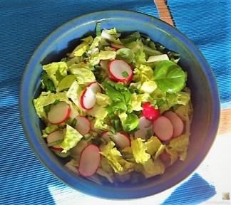 Rotbarsch, Kartoffelstampf und Salat (13)