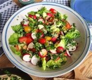 Baba Ganoush und Salat (20)