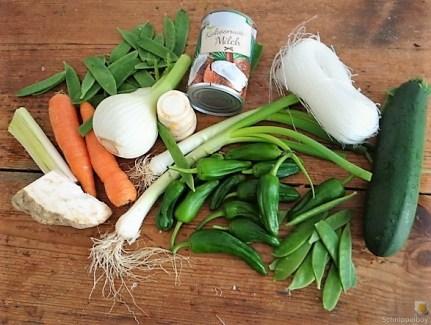 Gemüse in Kokosmilch mit Glasnudeln (8)