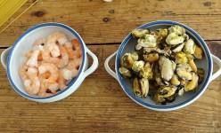Pasta mit Muscheln, Garnelen und Avocadosauce (9)
