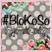 BloKoSo